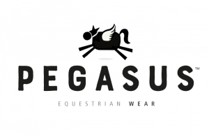 Logo Design - Pegasus Wear